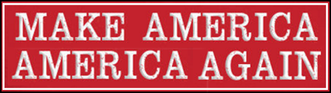 """Make America America Again"" banner graphic by dcb Web Publishig."
