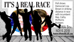 Lisa Brown for Congress: I's a Real Race between Cathy McMorris Rodgers & Lisa Brown in WA 5th District.